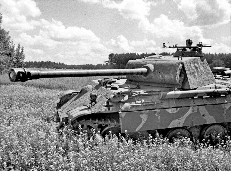 Tank Panther V (5.SS-Panzer-Division «Wiking»)