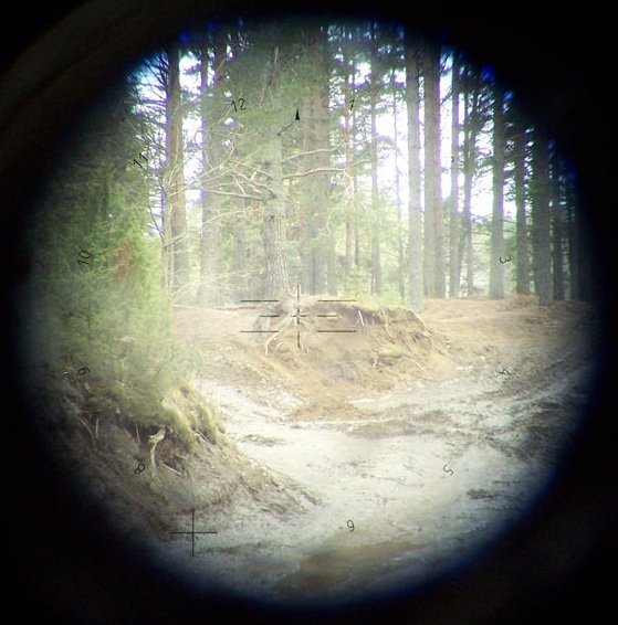 View through the panoramic PERI R17 sight